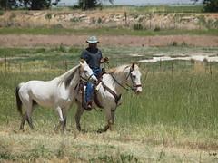 C and Dan, ponying Sha, trails (lostinfog) Tags: dan grass colorado trail danny e30 2012 201205 shabang ridercc