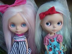 Bindi & Poppy have been taken out of mothballs!