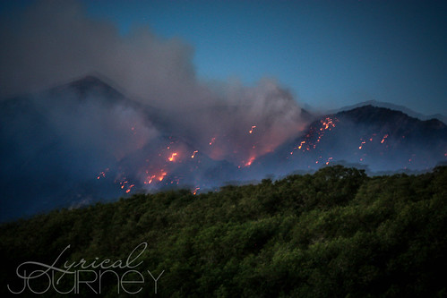 Alpine Quail Fire (30 of 33)