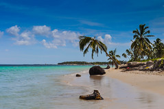 Beautiful Dominican Beach (Nikolay.Laletin) Tags: ocean fish hot tourism beach nature yellow boats island boat sand scenery escape view dominicanrepublic small relaxing scenic wave resort several exotic beaches destination leisure shallow tropics pleasure  destinations
