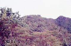 SierraSantamarta029