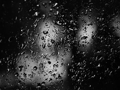 """""""Some people feel the rain. Others just get wet.""""  - Bob Marley - Explore Front Page! (@mons.always) Tags: bw wet rain drops nikon d90"""