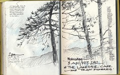 Eating home made ice cream by the lake (skyeshell) Tags: trees sketch farm sketchbook lakeside lancashire preston trout conifers a59 sketchbookjournal drawingoutdoors colouredpencilandgraphite nearwhalley