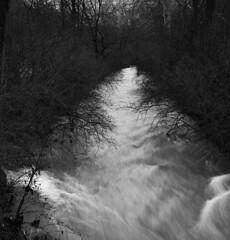 cascades_park000070 (mark mullis) Tags: park water stream indiana cascades bloomington rapid