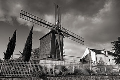 Windmhle in Argenteuil (Georg Hirsch) Tags: bw windmill mhle blackwhite frankreich energie argenteuil windmhle zypressen