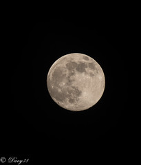 Moon (davide.soffietti) Tags: moon notte