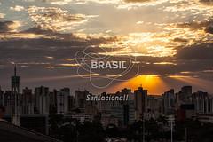 CO_Goinia0517 (Visit Brasil) Tags: pordosol sol horizontal arquitetura brasil skyline goinia panormica semgente centrooeste diurna