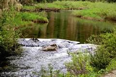 Granite Creek (jimgspokane) Tags: mountains washingtonstate forests creeks otw nikonflickraward