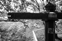 XT1-04-31-15-391-2 (a.cadore) Tags: nyc newyorkcity zeiss landscape uptown fujifilm riversidepark uws carlzeiss xt1 biogont2828 zeissbiogon28mmf28 fujifilmxt1