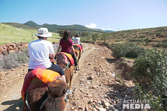 KS4A5243 (Actuality_Media) Tags: morocco maroc camels excursion studyabroad actualitymedia documentaryoutreach filmabroad
