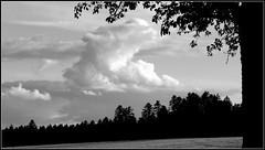 - Schwarzwald ooh... Heimat - (horidole ist im Urlaub) Tags: landscape landschaft schwarzwald blackforest heimat badenwrttemberg fortnoire berndsontheimer