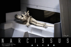NARCISSUS28 (sith_fire30) Tags: sculpture building art scott miniature big model allen action alien aves ripley shuttle figure beast custom dayton diorama giger narcissus chap hrgiger prometheus sculpt styrene ridley xenomorph nostromo fixit sithfire30 covneant