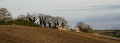 Derryboye Hills (dareangel_2000) Tags: trees nature rural landscape countryside spring farm country farming northernireland countrylife crossgar 2016 codown killyleagh saintfield raffery derryboye dariacasement derryboy derryboyetownland