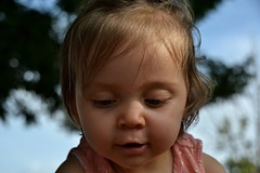 DSC_3566 (auroresb091) Tags: pink baby girl beautiful rose young rosa littlegirl bb
