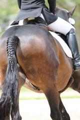 IMG_3282 (dreiwn) Tags: horse pony horseshow pferde pferd equestrian horseback reiten horseriding showjumping dressage reitturnier dressur reitsport dressyr ilsfeld dressuur ridingclub junioren ridingarena pferdesport springreiten reitplatz reitverein dressurreiten dressurpferd dressurprfung tamronsp70200f28divcusd jugentturnier