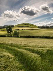 Quothquan Law Hill (Dylan Nardini) Tags: summer nikon lanarkshire 2016 d810