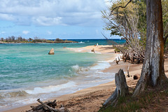 MALAEKAHANA STATE RECREATION AREA (boydbrooks999) Tags: travel blue vacation green beach nature clouds palms island hawaii bay big sand paradise pacific oahu getaway relaxing calm retreat shade hawaiian mauna kea aloha sunbathing polynesian tradewinds oceanbreeze windwardside malaekahanastaterecreationarea