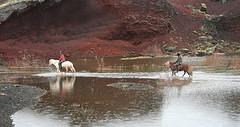 Algeng reiðleið í Rauðhólum (helga 105) Tags: red water lava iceland riding hraun rautt hors vatn hestur helga105 ríðandi