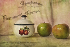 Sugar keeper and green apples (Nancy Violeta Velez) Tags: texture photography interesting flickr plantae greenapples angiosperms eudicots stiillife nikkor18200 rosids tatot pomaceousfruit nikond5000 tomjoneslittlegreenapples frenchkisscraquelureepic adobephotoshopelements90windows sugarkeeperandgreenapples frenchkissartisteflowergarden frenchkissartistelumineux frenchkissphotostudiohattiger nancyvioletavelez~photographicart
