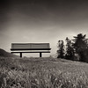 Lost .... again .... (Petur) Tags: trees bw woman blancoynegro grass bench lost blackwhite innamoramento asquaresuperstarstemple