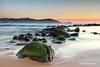 Avoca Dawn (dkatselas) Tags: morning seascape beach water dawn moss rocks centralcoast avoca wow1
