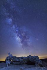The Sentinel (Willie Huang Photo) Tags: california sky nature night stars landscape nationalpark nightscape scenic sierra galaxy yosemite yosemitenationalpark milkyway tioga sentineldome