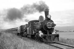 TAS271 (Kiwi yzxy) Tags: railroad railway trains tasmania tgr centennialtrain tasmaniangovernmentrailways