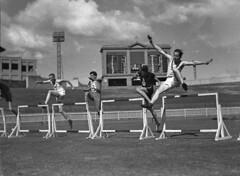 Anglų lietuvių žodynas. Žodis athletics reiškia n atletika, kūno kultūra, sportas lietuviškai.