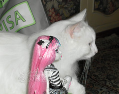 Rochelle Goyle and the gargoyle cat ~ SAM3010_MonsterHigh_Rochelle_ (applecandy spica) Tags: pink white black cat grey furry kitten chat doll soft gray kitty fluffy gargoyle katze fleurdelis fatcat chubby weiss gatto bianco blanc kittie ktzchen micio rochelle chaton gattino weis soffice peloso morbido gattone micetto micione gattochiatto monsterhigh rochellegoyle
