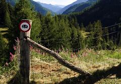no camping (adlin) Tags: summer sign fence lago schweiz switzerland tessin ticino south nocamping sden sambuco altavallamaggia