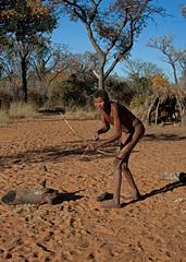 Strong man (Roelie Wilms) Tags: san namibia bushman namibi sanpeople grootfontein bosjesmannen elementsorganizer namibi2012 namibi2012