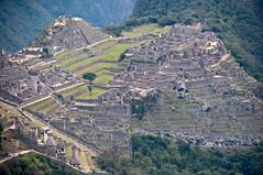 Machu Picchu-60