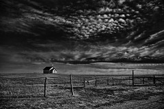Always there (louieliuva) Tags: blackwhitephotos