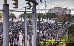 _MG_2697 as Smart Object-1.jpg (joyfullvision) Tags: sanfrancisco cats animals rally prolife 20110121
