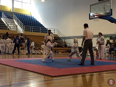 stefanou_15_5_2016_knockdown_135