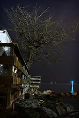 Paseo por el arbol (F SoGel :-)) Tags: wood sea sky espaa lighthouse tree beach night faro arbol mar madera rocks playa paseo galicia cielo nocturna nocturne pontevedra vigo rocas riadevigo museodelmar mourisca laboratoriofsg