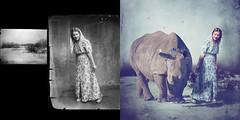 Delicate Dancer (jane-long) Tags: photoshop photography dancer photorestoration rhinocerous costicacsintearchive janelongphotography
