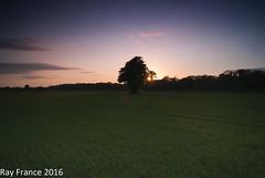 Mallow sunset (ray france) Tags: ireland sunset irish beautiful sunshine landscape sony exploring explore brilliant