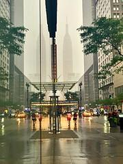 Empire State rain (explore) (dannydalypix) Tags: nyc reflection reflections manhattan 34thstreet empirestatebuilding empirestate gothamist gotham