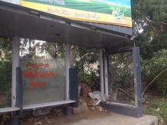 Karachi 3 (Mehdi/Messiah Foundation International) Tags: pakistan punjab karachi ramadan lahore sindh gujrat jhang urdu ramzan gujranwala imammahdi imammehdi goharshahi riazahmedgoharshahi mehdifoundationinternational mehdifoundation
