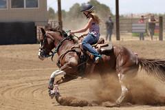 Fly-N-High (Tackshots) Tags: horse riding cowgirl applevalley barrelracing nbha flynhigh