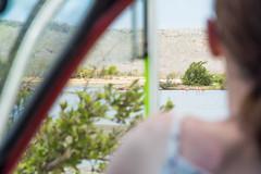 Watching Flamingos from parking (timohermann) Tags: flamingos curacao curaao jankok sintwillibrordus williwood