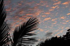 Early Morning Sjy (gripspix) Tags: southamerica de dusk dmmerung sonnenaufgang dwn easter island sdamerika osterinsel isla pascua chile nui rapa chili 2010092129