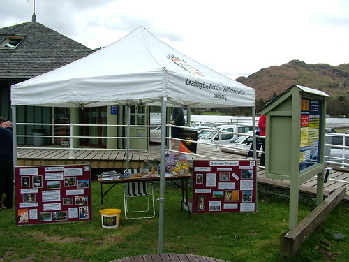 The World Owl Trust at Glenridding Pier House, April 2012