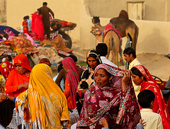 Camel cart family elder announces departure , it could be heard loud and clear at a distance . (S M JOYIA) Tags: pakistan horse festival youth children fun dance women desert transport culture donkey snack punjab mella horsecart horsepower donkeycart manpower camelcart cholistan rohi colorsofpakistan chananpeer snackcharmer interestingsandcamel vehiclewheels danceondrumbeat
