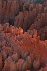 Faded Light (Crest Pictures) Tags: sunrise bryce brycenationalpark