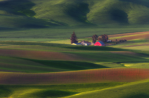 Little Red Barn - Steptoe Butte, WA