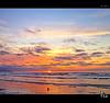 One Low One High (tomraven) Tags: sea sky sun beach clouds surf seagull gull nz fbdg dancinggull degull q42010 flickrstruereflection1 flickrstruereflection2 q22012