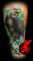 Bald Eagle Tattoo by Jackie Rabbit (Jackie rabbit Tattoos) Tags: city color bird tattoo america star virginia cool colorful eagle good awesome great bald patriotic roanoke american va jackierabbit