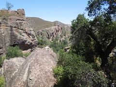 Pinnacles (28) (returnoftheyeti) Tags: camping nationalpark hiking pinnacles pinnaclesnationalmonument balconiescave dayhikes beargulch